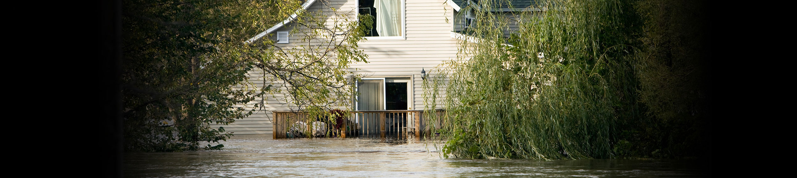Water & Flood Damage Removal Services in Paul Davis Emergency Services of Williamsville, NY